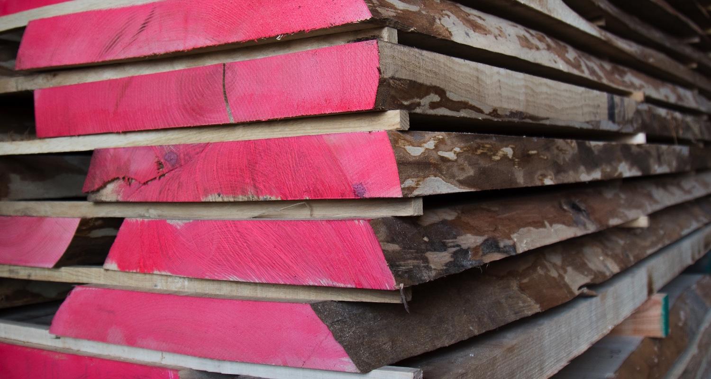 legnami-vendita-legno-legname-larice-siberiano-ingrosso-da-costruzione-prezzi-stagionatura-commercio-rovere-europeo-tavole-prezzo-prefinito-legna-abete-faggio-frassino-tiglio-dal-lago-spa-frassino